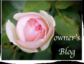 aroma rosa ブログ